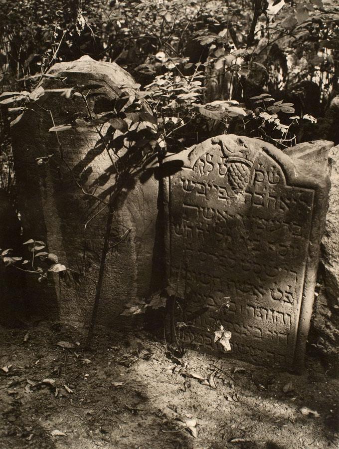 Starý židovský hřbitov v Praze